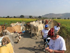 aravali cycling trails